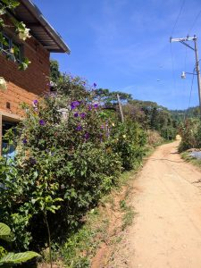 The way out of Yaviche to Oaxaca